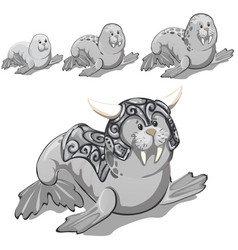 set stages growing up walrus in gray vector image