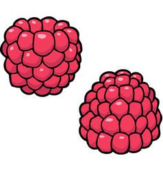 cartoon doodle raspberry vector image vector image
