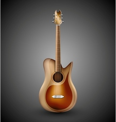Isolated acoustic guitar vector image