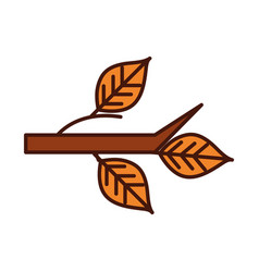 autumn branch tree leaves foliage nature line vector image