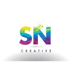 Sn s n colorful letter origami triangles design vector