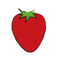 strawberry fruit sweet vitamin nature vector image