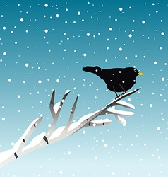 Winter with blackbird on branch vector image vector image