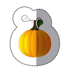 sticker colorful pumpkin vegetable halloween icon vector image