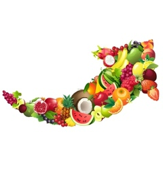Arrow composed of different fruits with leaves vector