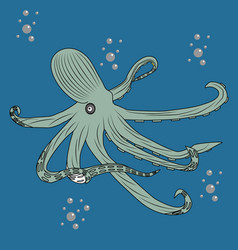 beautiful octopus in the water with air bubbles vector image
