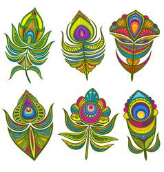 decorative ethnic peacock feathers set vector image