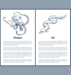 Eel and octopus hand drawn vector