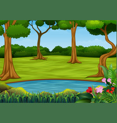 forest scene with many trees and small pond vector image