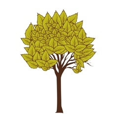 Green tree plant vector