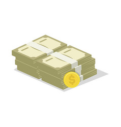Packing in bundles of banknotes icon vector