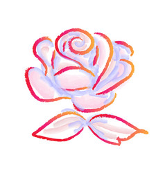 rose watercolor painting on a white background vector image
