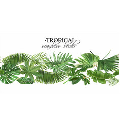 seamless border with green tropical leaves vector image