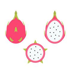 dragon fruit set vector image