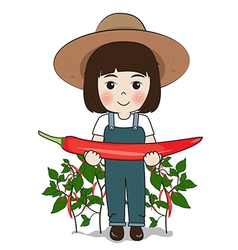 planter and chilies vector image vector image