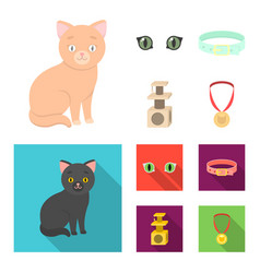 Cat eyes a collar a house for a cat a medal on vector