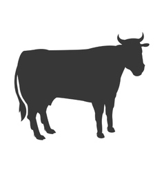 cow silhouette icon vector image