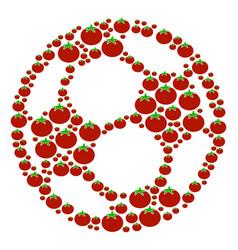 Football ball collage of tomato vector
