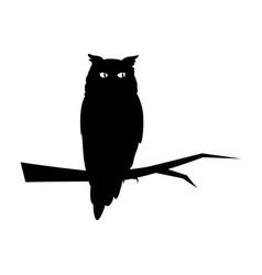 Owl on white background vector