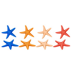set of colored starfish on a white background vector image