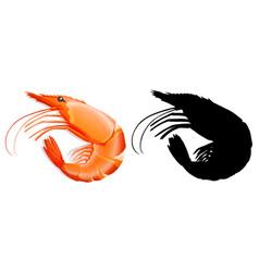 Set of prawn on white background vector