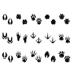 grungy Animal Footprint Track icon vector image vector image