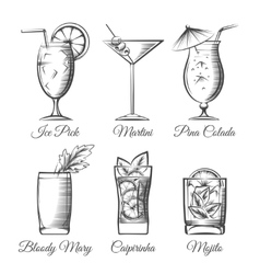 Engraving cocktails vector image