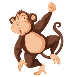 a monkey character on white background vector image