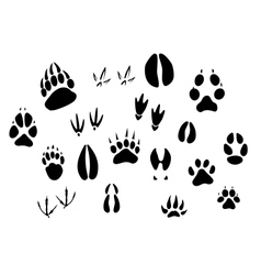 Animal footprints silhouettes vector image