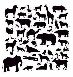 animal silhouettes set isolated on white vector image