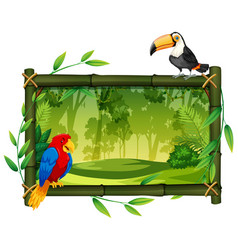 birds on jungle picture frame vector image