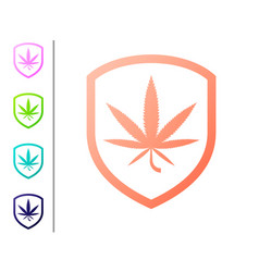 coral shield and marijuana or cannabis leaf icon vector image