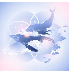 Graphic whales flying in the sky vector