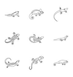 Iguana icons set outline style vector