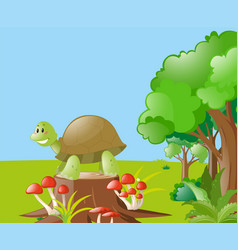 Nature scene with turtle on the log vector