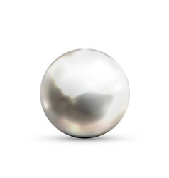 realistic glossy metal sphere with glares and vector image