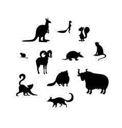 Set animal s silhouettes kangaroo xerus vector