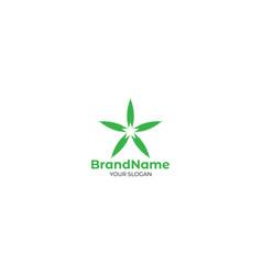 star in cannabis leaf logo design vector image