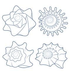 Set of seashells isolated objects vector image