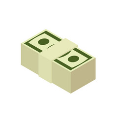 Stack of cash isolated pile of money pack of vector