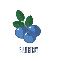 Blueberry icon in flat style on white background vector
