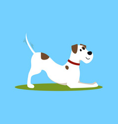 cartoon color funny puppy on green grass vector image