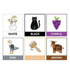 Flashcards with main colors learn primary colours vector