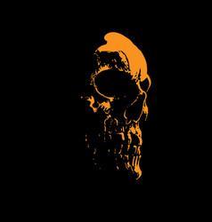 Scull portrait silhouette in contrast backlight vector
