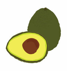 big avocado isolated on white background vector image vector image
