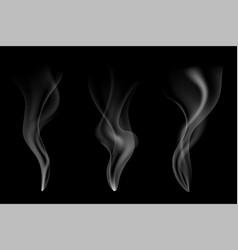 gentle smoke flow on black vector image