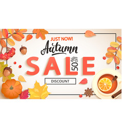 Autumn sale promo just now banner with discount vector