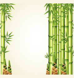 background design with bamboo stems vector image