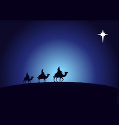 birth christ wise men vector image