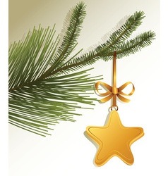 Christmas tree branch with gold star vector image